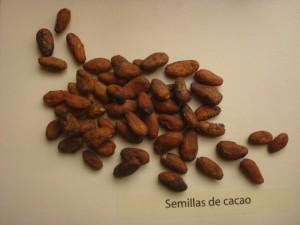 Semillas_de_cacao_usadas_como_moneda